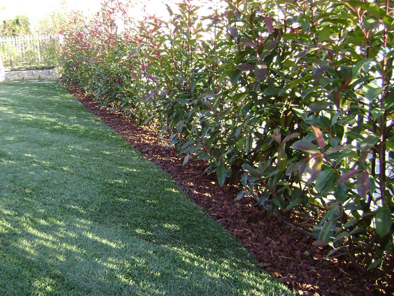 Cordoli per giardino bordure per giardino pietra design for Cordoli per aiuole in tufo