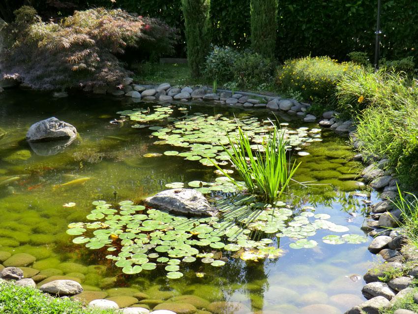 realizzazione di laghetti artificiali e giochi d 39 acqua per