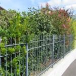 creazione giardini progettazione